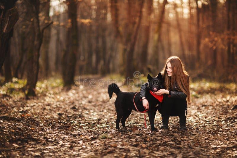 Mujer hermosa que frota ligeramente su perro al aire libre Muchacha bonita que juega y que se divierte con su animal dom?stico po imagen de archivo