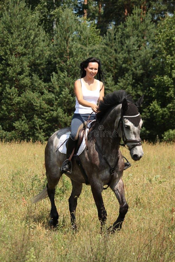 Mujer hermosa que monta el caballo gris en el bosque fotos de archivo libres de regalías