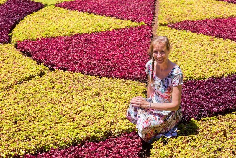 Mujer holandesa como turista entre las plantas coloridas imagen de archivo
