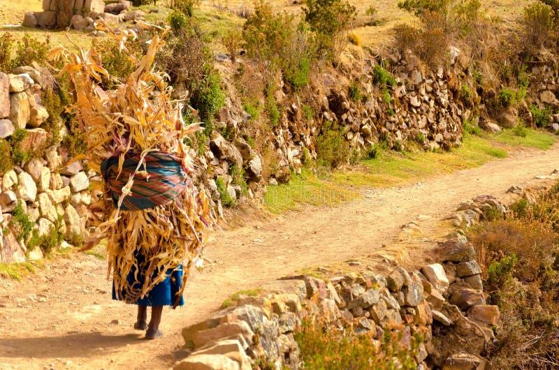 Mujer indígena en la trayectoria en Bolivia imagenes de archivo