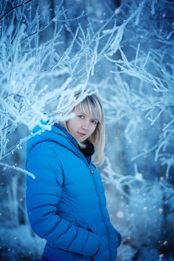 Mujer joven atractiva hermosa del retrato en el invierno al aire libre en la madera nevada imagen de archivo libre de regalías