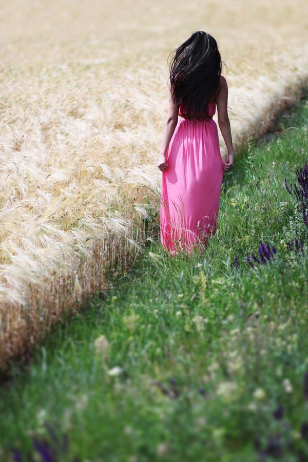 Mujer joven cerca de un campo de trigo imagen de archivo