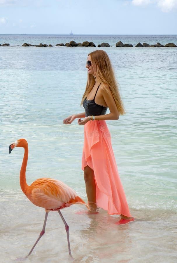 Mujer joven con el pelo rubio largo en bikini negro y el abrigo rosado que alimentan flamencos rosados en la playa #3 fotografía de archivo libre de regalías