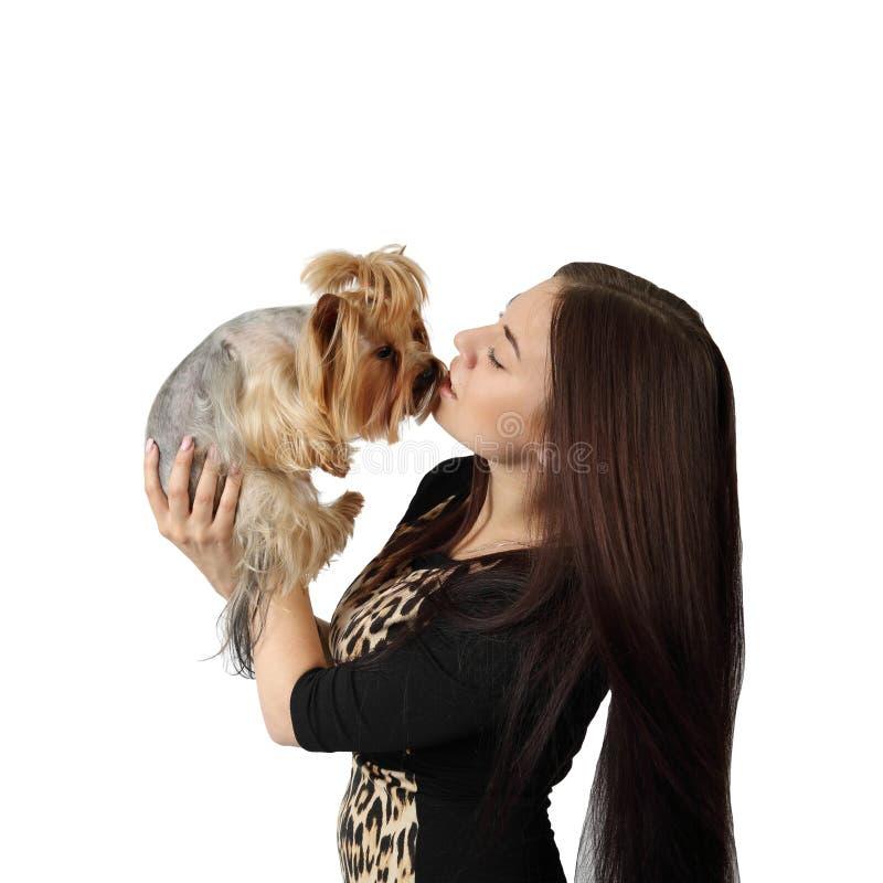 Mujer joven con el pequeño perro foto de archivo libre de regalías