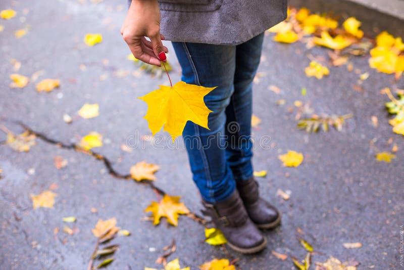 Mujer joven con la hoja amarilla en parque hermoso del otoño imagen de archivo