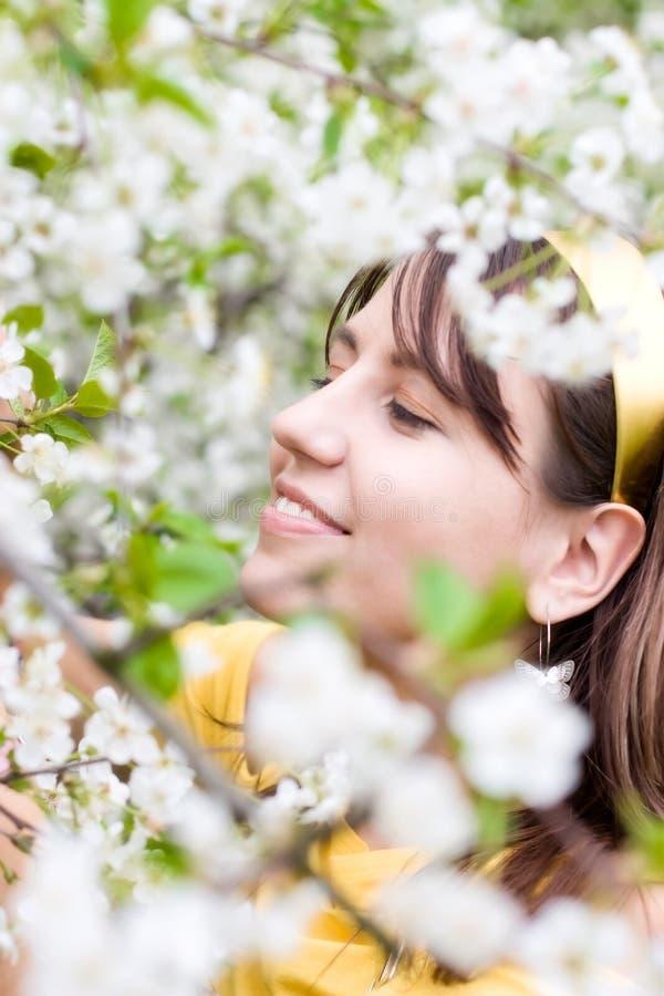 Mujer joven con las flores de la cereza del resorte imagen de archivo