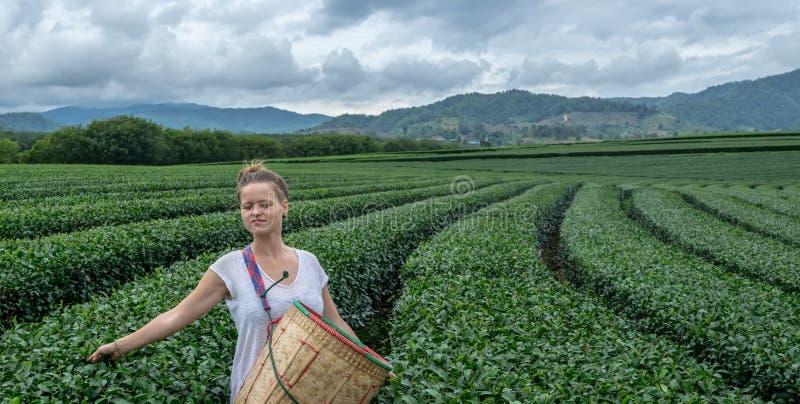 Mujer joven con los ojos cerrados disfrutando del paisaje hermoso de los campos del té foto de archivo