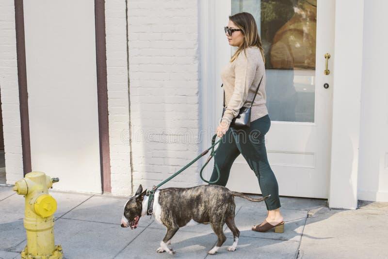 Mujer joven de Latina que camina su perro con la boca de incendios imagen de archivo libre de regalías