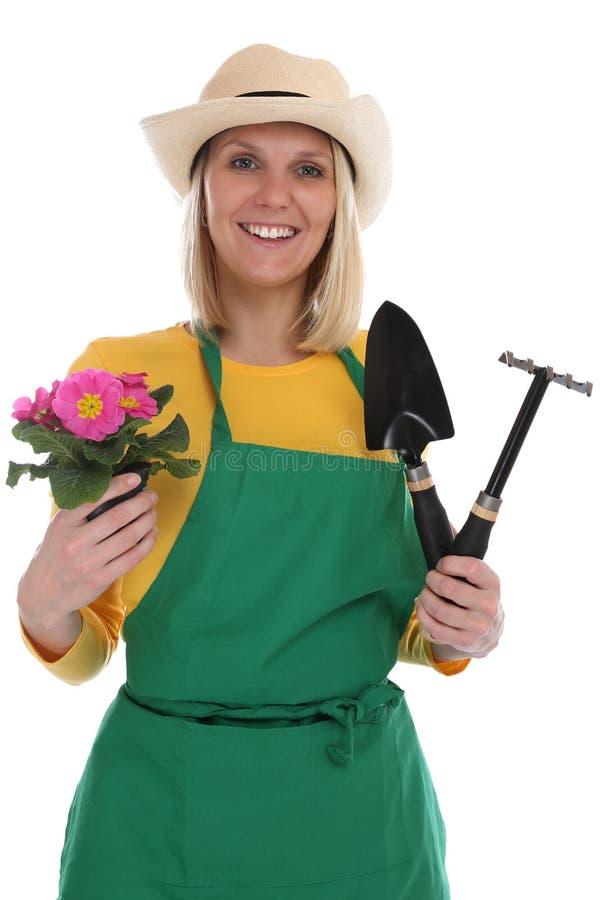 Mujer joven del gardner del jardinero con occupa del jardín el cultivar un huerto de flor foto de archivo