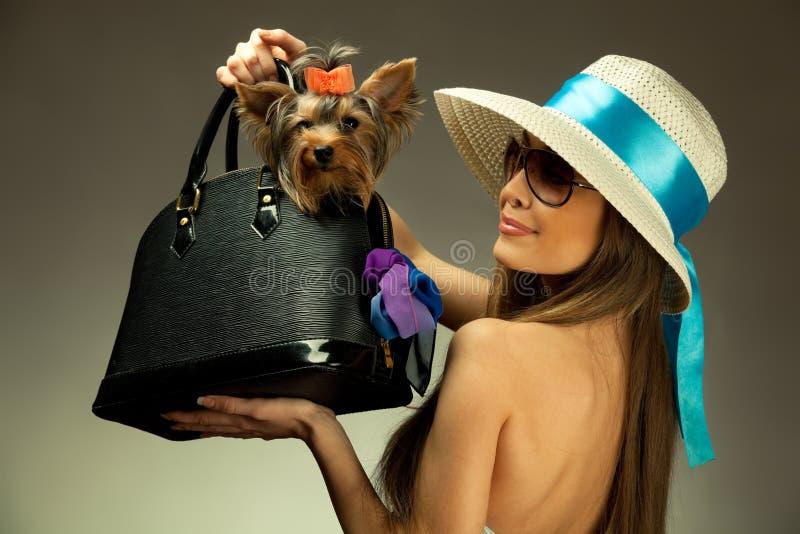 Mujer joven del glamor con el terrier de Yorkshire imagen de archivo libre de regalías