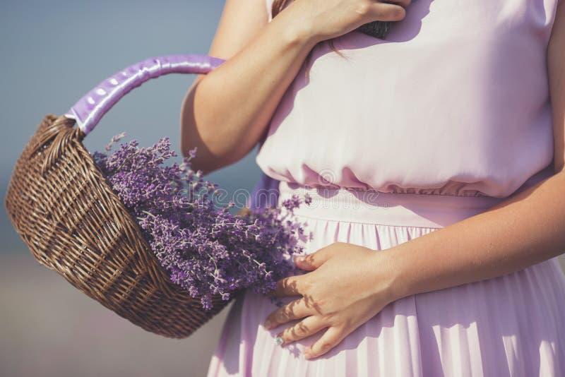 Mujer joven en campo de la lavanda fotos de archivo libres de regalías