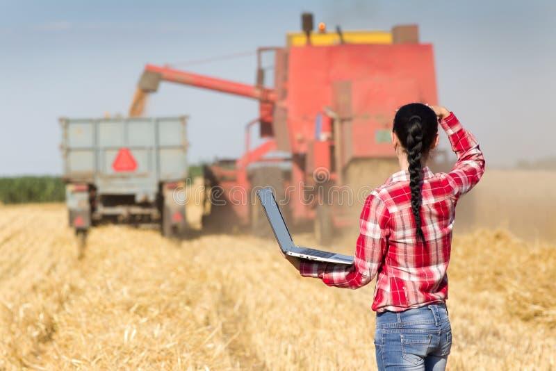 Mujer joven en campo de trigo durante cosecha fotos de archivo libres de regalías