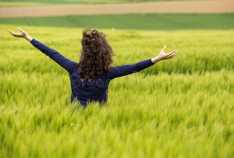 Mujer joven en campo de trigo verde imagenes de archivo