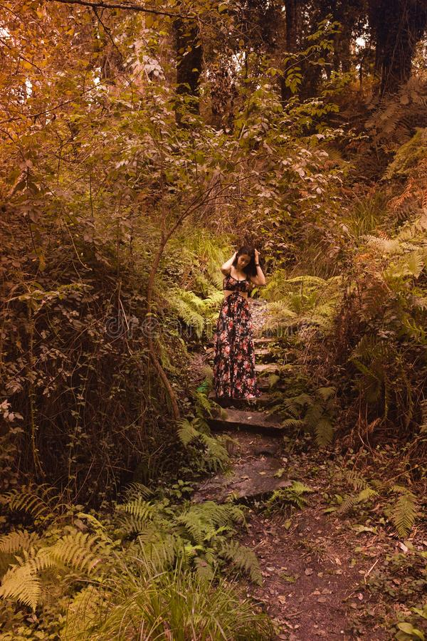 Mujer joven en el bosque con las manos en su cabeza observando la naturaleza foto de archivo