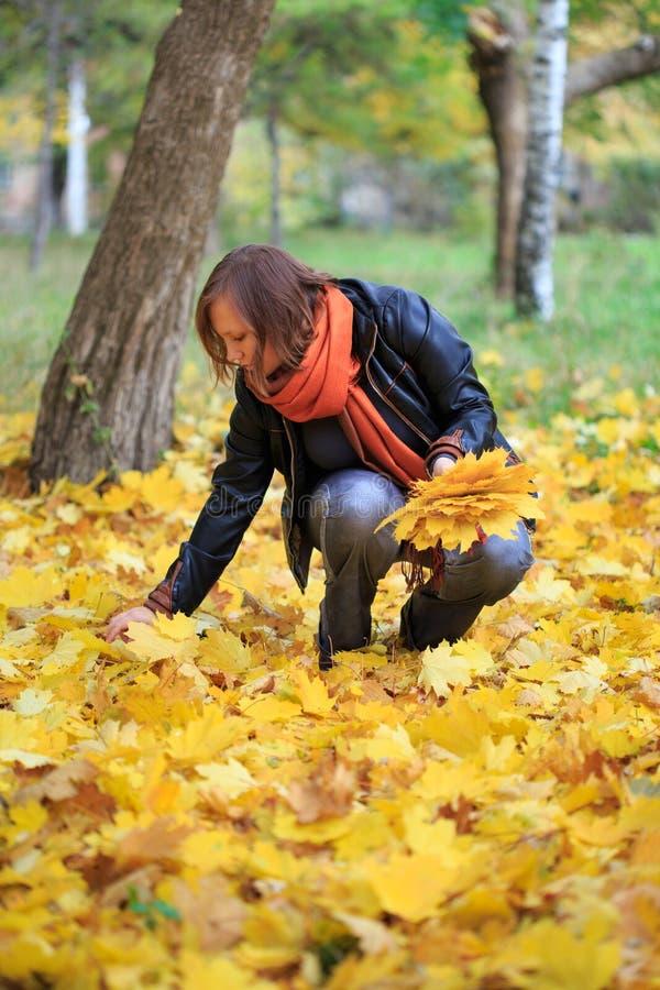 Mujer joven en el parque que recolecta las hojas otoñales fotografía de archivo