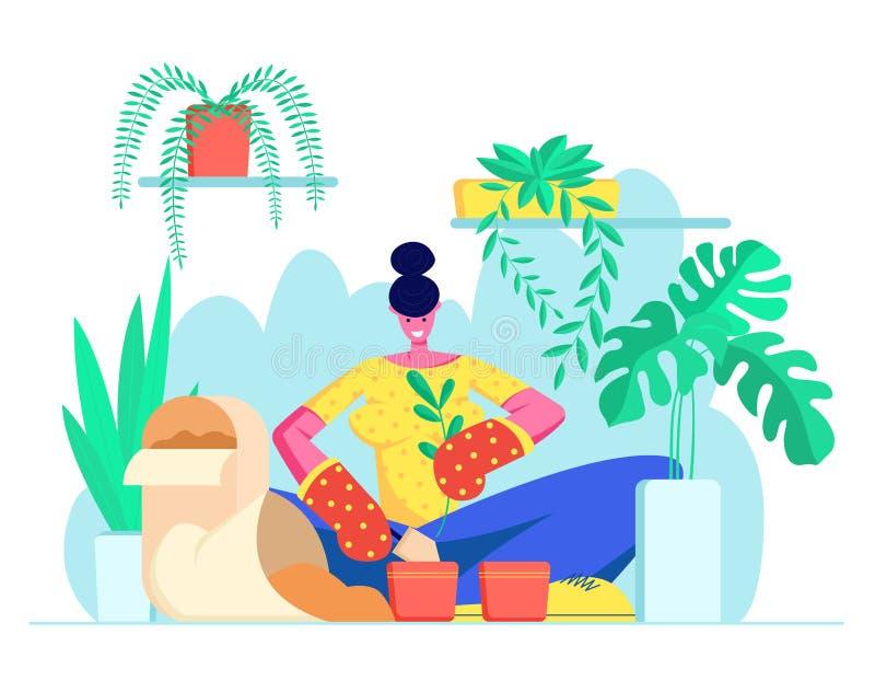 Mujer joven en guantes que replanta la flor nacional a otro pote El botánico Planting Houseplant, produce las hierbas Muchacha qu stock de ilustración