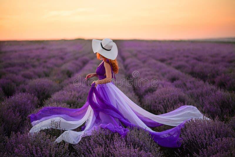Mujer joven en la situación púrpura lujosa del vestido en el campo de la lavanda, vista posterior fotos de archivo libres de regalías