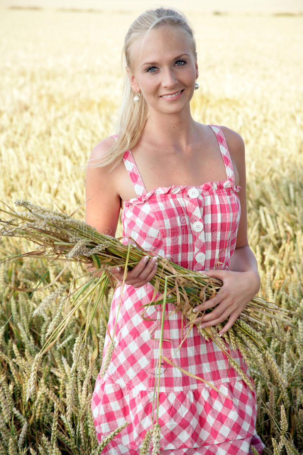 Mujer joven en un campo de maíz foto de archivo