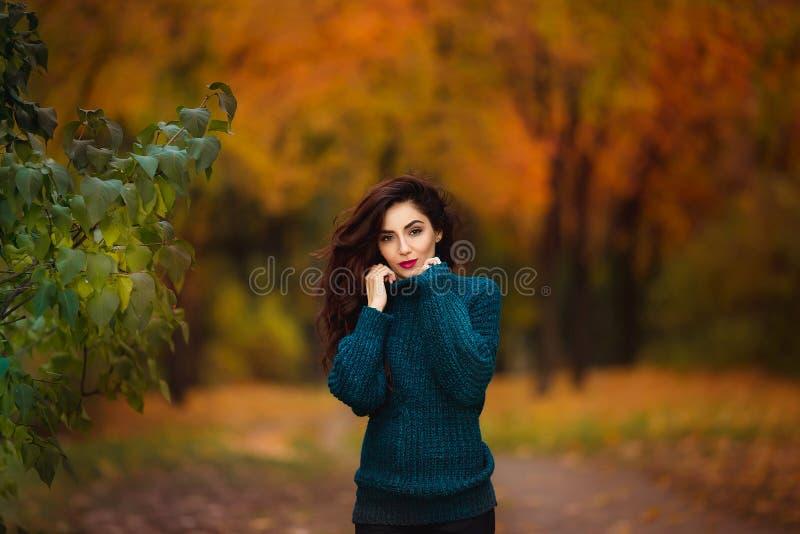 Mujer joven feliz en parque en día soleado del otoño La muchacha hermosa alegre en suéter verde al aire libre entre amarillo se v imagenes de archivo
