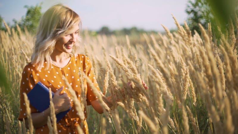 Mujer joven feliz hermosa en el campo de espiguillas y del trigo con el libro en la puesta del sol, rubio en la hierba que tiene  imagenes de archivo