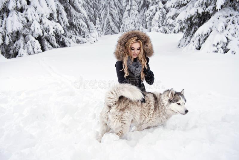 Mujer joven feliz que juega con los perros fotografía de archivo libre de regalías