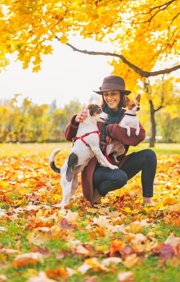 Mujer joven feliz que juega con los perros al aire libre imágenes de archivo libres de regalías