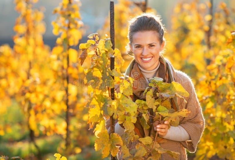 Mujer joven feliz que se coloca en viñedo del otoño fotografía de archivo