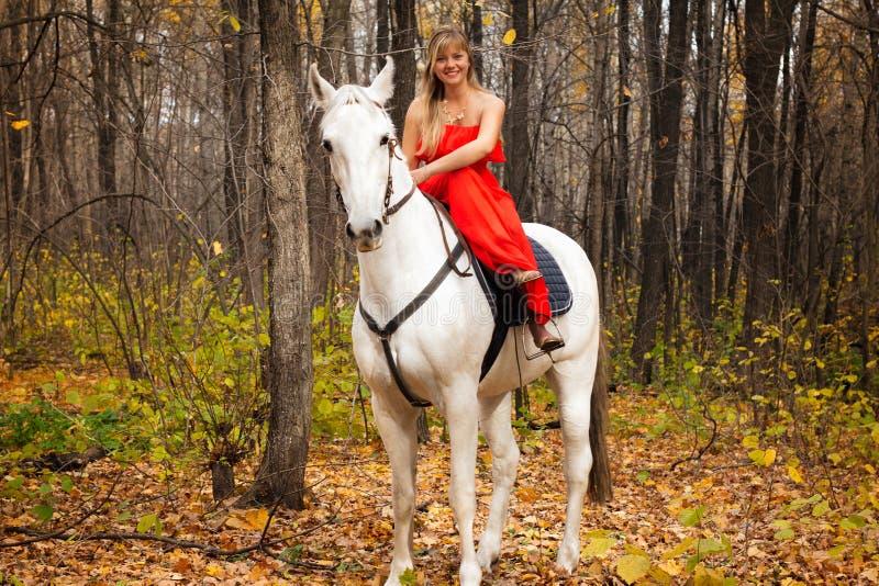 Mujer joven fina a caballo en el caballo blanco foto de archivo