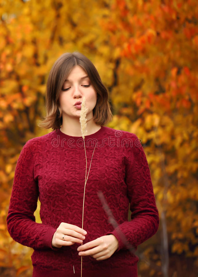 Mujer joven hermosa Autumn Portrait fotos de archivo