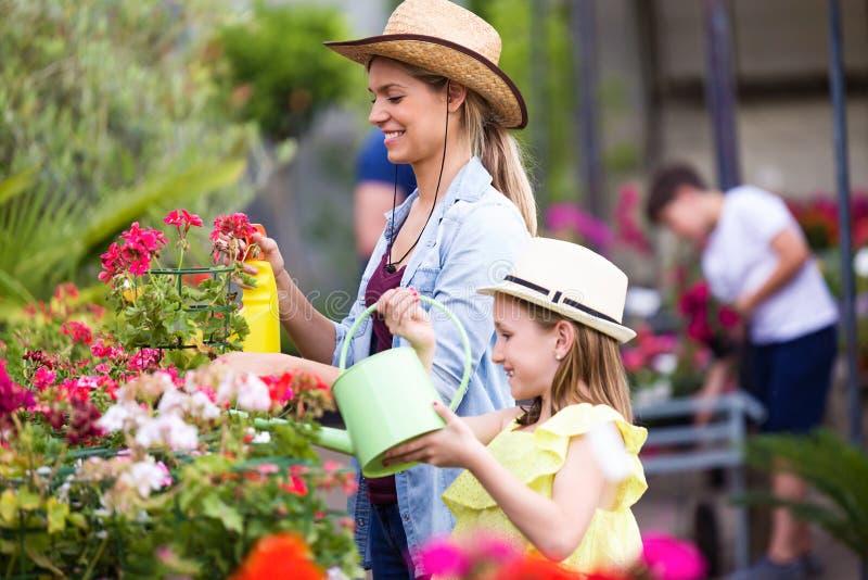 Mujer joven hermosa con su hija que riega las plantas en el invernadero imágenes de archivo libres de regalías