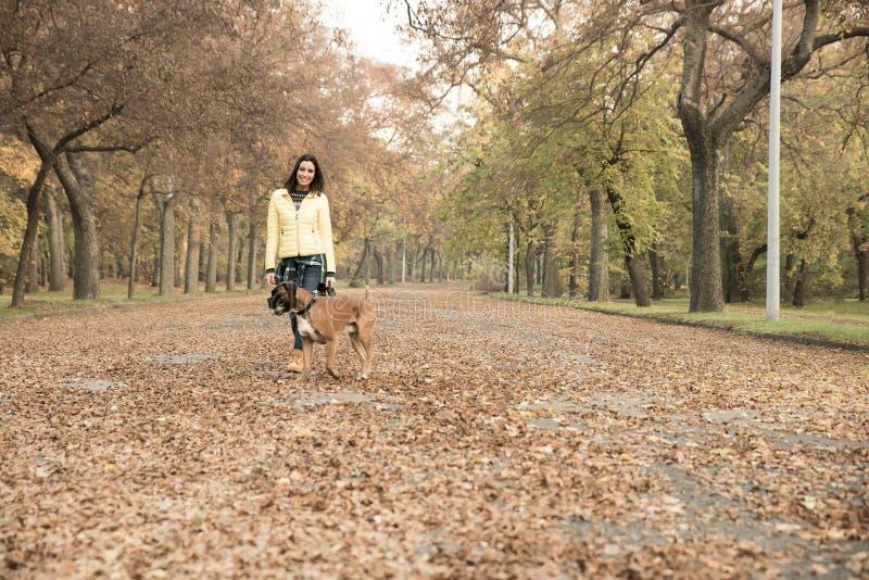 Mujer joven hermosa con su perro en el parque fotografía de archivo libre de regalías