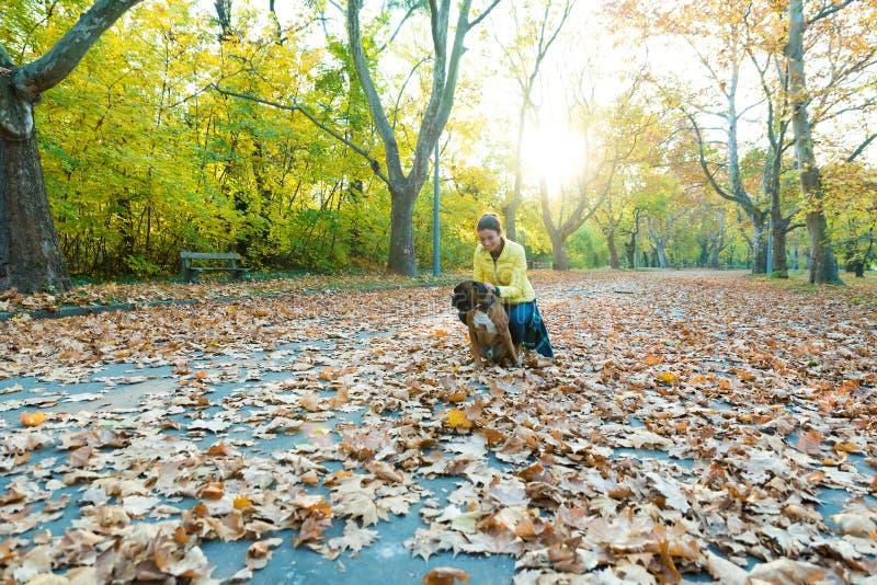 Mujer joven hermosa con su perro en el parque imágenes de archivo libres de regalías