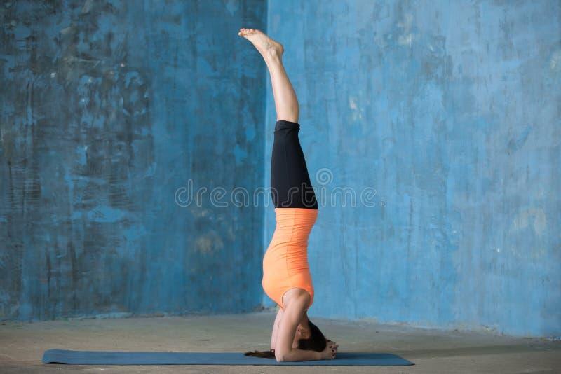 Mujer joven hermosa deportiva que hace el headstand fotos de archivo