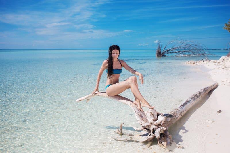 Mujer joven hermosa en bikini en el océano Morenita atractiva joven en traje de baño azul en agua azul fotografía de archivo libre de regalías
