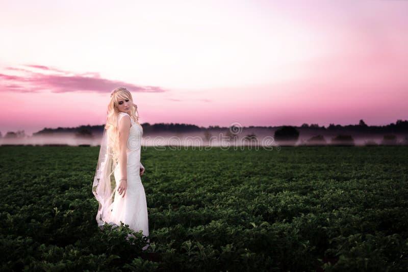 Mujer joven hermosa en un vestido de boda en un amanecer rosado fotografía de archivo libre de regalías