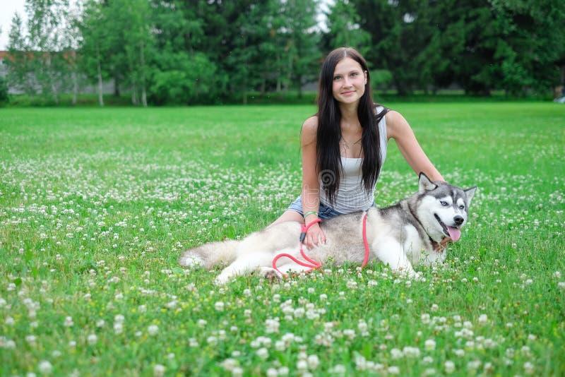 Mujer joven hermosa que juega con el perro fornido divertido al aire libre en el parque imagenes de archivo