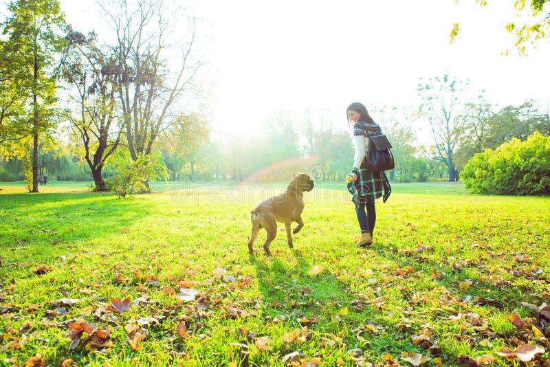 Mujer joven hermosa que juega con su perro en el bosque imagen de archivo libre de regalías