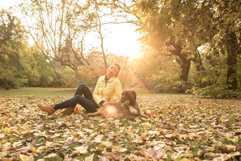 Mujer joven hermosa que juega con su perro en el bosque imagen de archivo