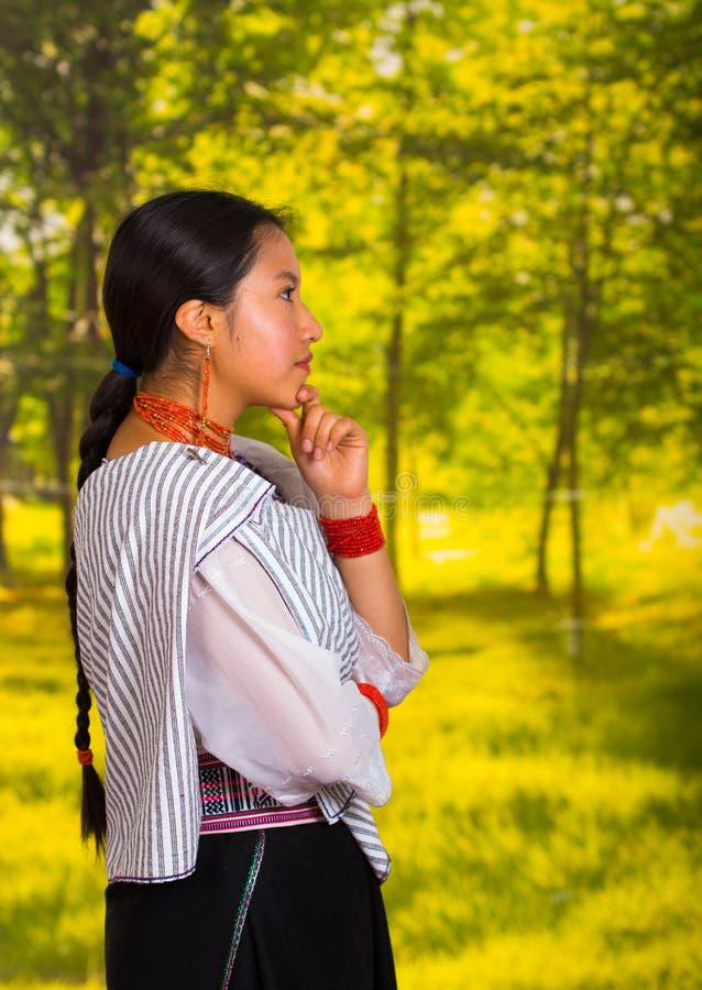 Mujer joven hermosa que lleva la blusa andina tradicional con el collar, colocándose de presentación para la cámara, cuerpo pensa foto de archivo