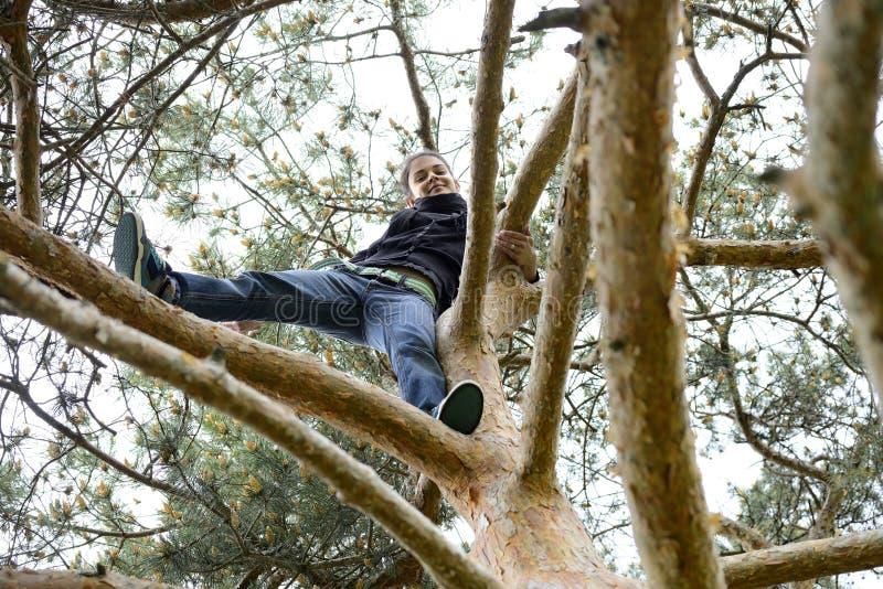 Download Mujer Joven Hermosa Que Mira Abajo De Un árbol Alto Foto de archivo - Imagen de creatividad, hojas: 42440332
