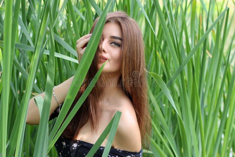 Mujer joven hermosa que se coloca en espadaña verde fotografía de archivo
