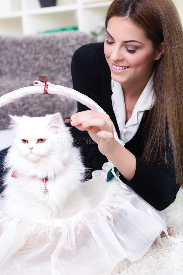 Mujer joven que alimenta un gato persa blanco imagenes de archivo
