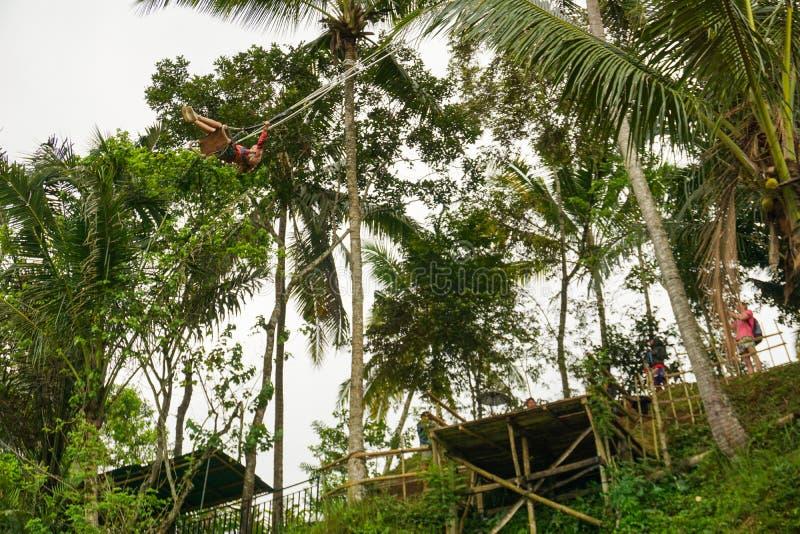 Mujer joven que balancea en la selva bajo campos colgantes del arroz, Tegallalang, Ubud, Bali, Indonesia foto de archivo libre de regalías