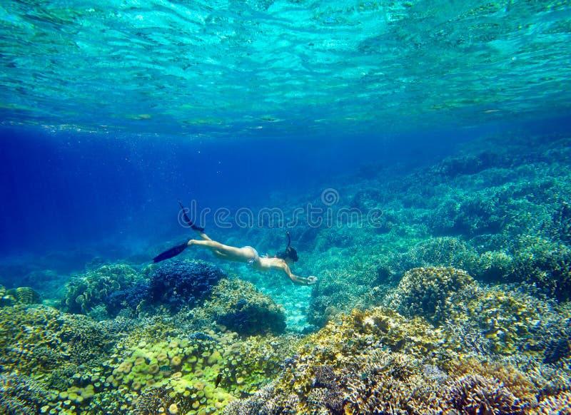Mujer joven que bucea en el arrecife de coral hermoso con las porciones de foto de archivo libre de regalías