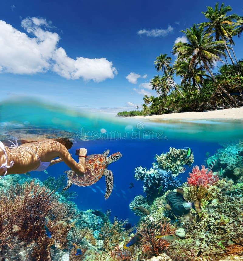 Mujer joven que bucea sobre el arrecife de coral en el mar tropical imágenes de archivo libres de regalías