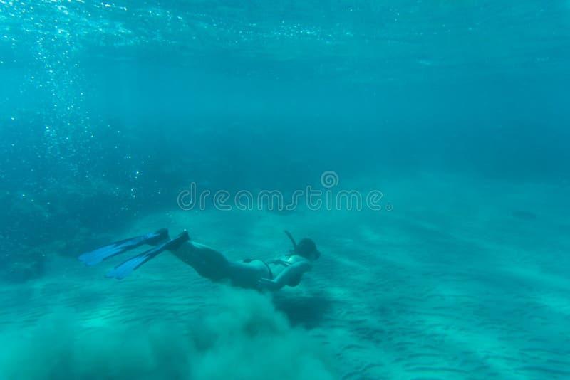 Mujer joven que bucea sobre el arrecife de coral en el mar tropical imagen de archivo