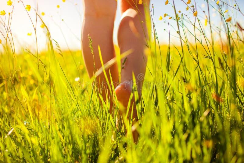 Mujer joven que camina en campo de la primavera en la puesta del sol entre hierba y flores frescas descalzo imagen de archivo libre de regalías