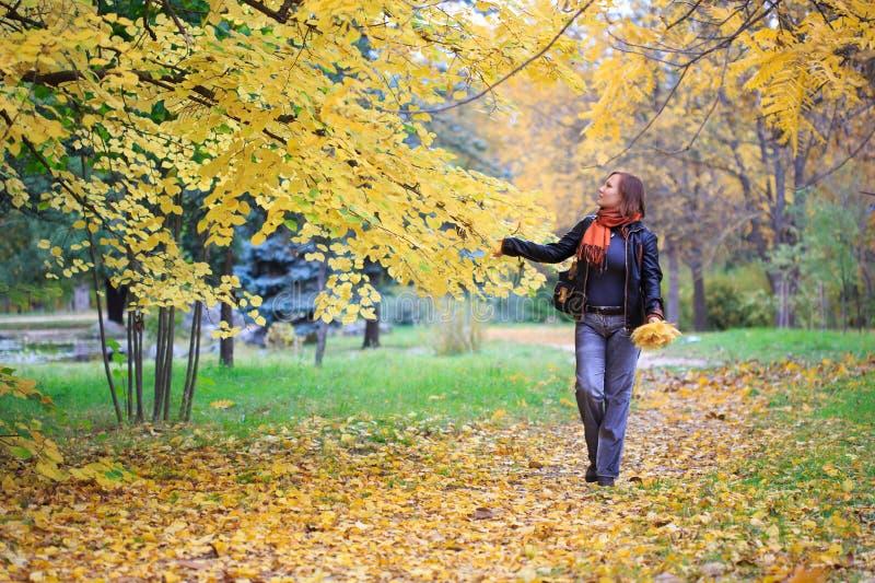 Mujer joven que camina en el parque del auumnal fotografía de archivo