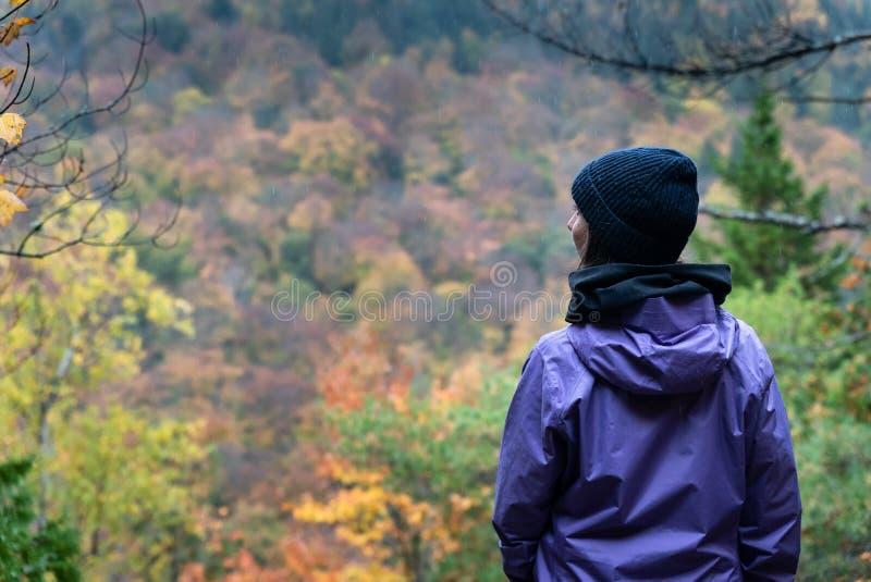 Mujer joven que camina en un bosque en un día lluvioso durante caída fotografía de archivo