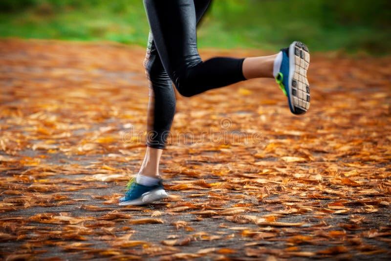Mujer joven que corre en las hojas de otoño de la última hora de la tarde imagenes de archivo